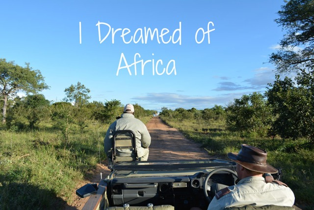 African Safari via youmademelikeyou.com