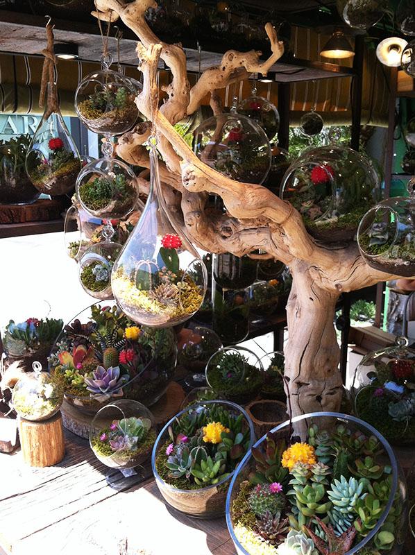 California Dreaming, Los Angeles, The Grove,  via youmademelikeyou.com