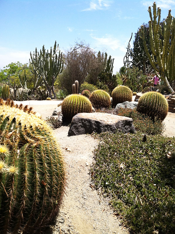 Balboa Park, San Diego California via youmademelikeyou.com