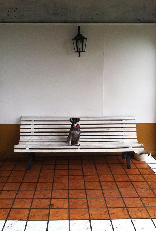 Estancia la Candelaria, de Lobos, Argentina