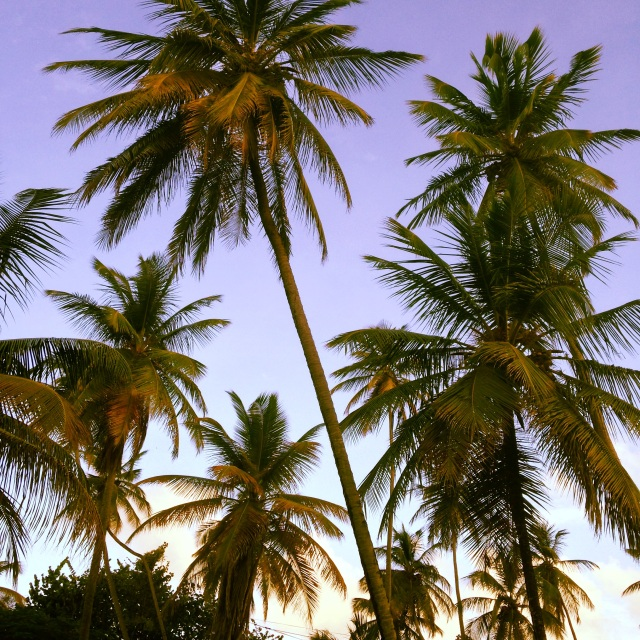 Impromptu trip to Trinidad and Tobago via youmademelikeyou.com