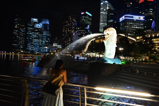 Lion Singapore via youmademelikeyou.com