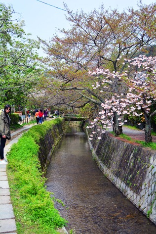Philosopher's Walk, Kyoto, Japan via youmademelikeyou.com