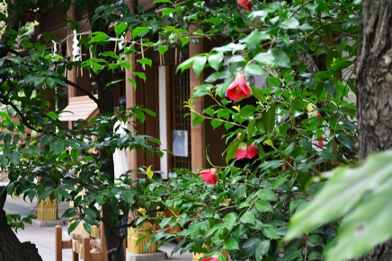 Tokyo, Japan via youmademelikeyou.com